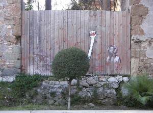 street-art-interacts-with-nature